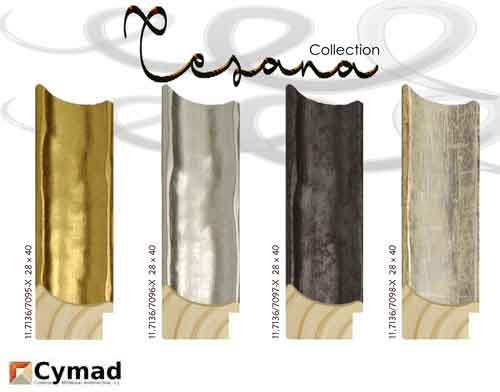 banner Cesana collection